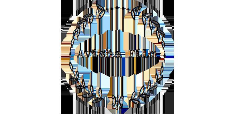 Avisha Film